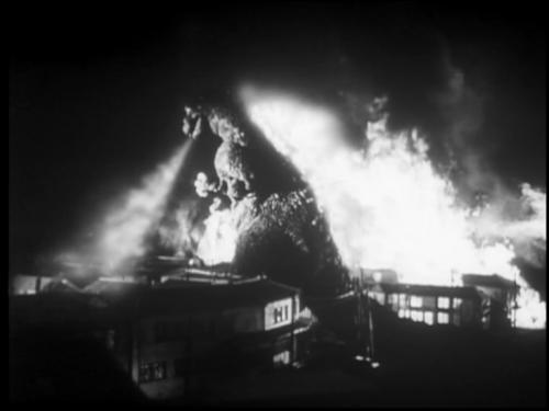 Gojira arba Godzilla filmas, 1954 metai