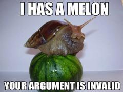 Aš turiu arbūzą, tavo argumentai netinka