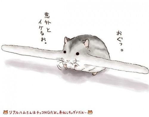 Žiurkėnas su ietimi burnoje