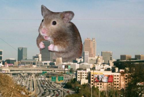 Gigantiškas žiurkėnas ėda pastatus Atlantos mieste, JAV