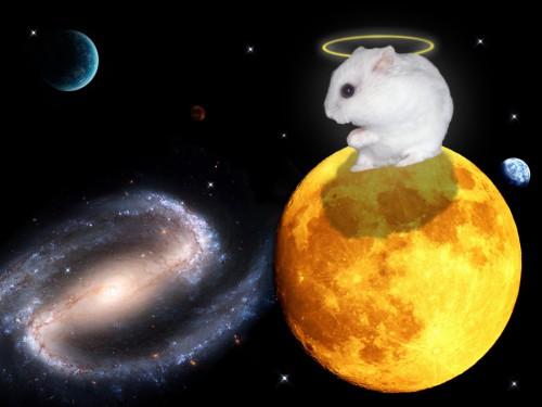Dieviškas kosminis tarpplanetinis žiurkėnas