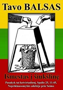 Rinkimų falsifikacija, mitingas