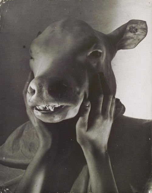 Erwin Blumenfeld. Diktatorius. Paryžius, 1937 metai.