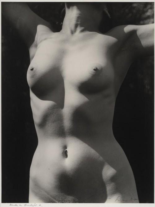 Max Dupain. Torsas saulės šviesoje. 1941.