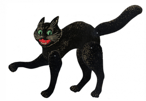 Štai taip išties atrodo katės, kai nemitologizuotos