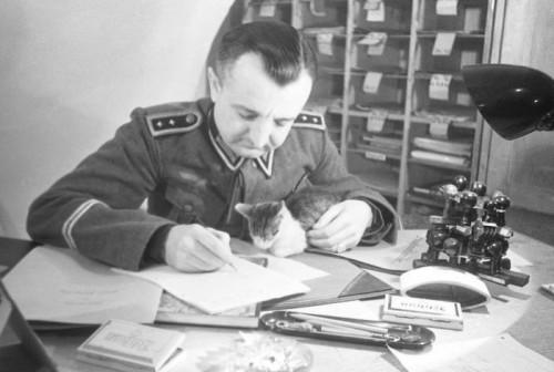 Dar viena nacistinė katė