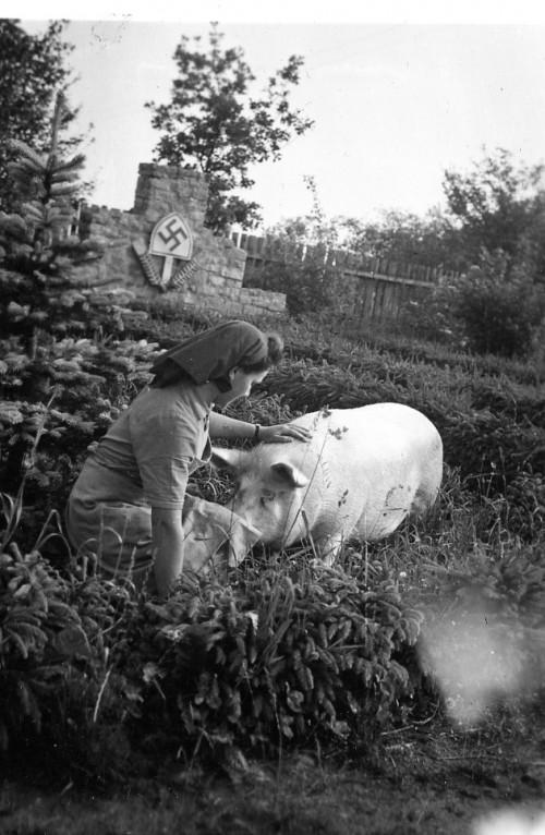 Mergina ir kiaulė