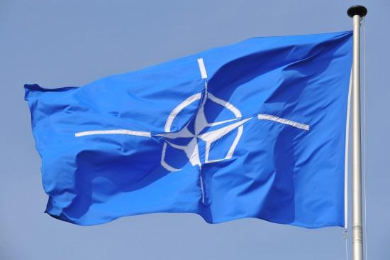 NATO vėliava puikiai kelia kognityvinį disonansą visokiems koloradams. Tokį disonansą, kad tie iš proto ima kraustytis.