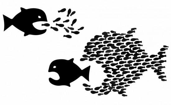 Štai taip kas nors įsivaizduoja, kad yra politikoje. Išties visiškai ne taip. Kaip mažos žuvys besiorganizuotų, jos visvien mažos žuvys. Taip ir partijos, neturinčios jokių bendrų idėjų ir aiškios politinės krypties lieka tiesiog spiečiumi mažų silkių, kurias net ešeriai gali suėsti. O rykliai tas silkes kibirais ryja.