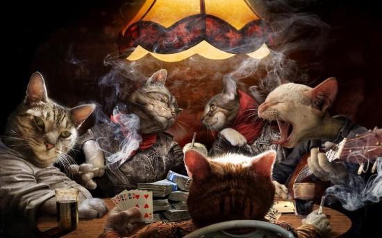 Kaip žinia, katės yra blogis, jos yra nusikaltėliškos, alkoholikės, lošia azartinius žaidimus, smirdi, o taip pat rūko. Viskas prasideda nuo rūkymo. Ir tos katės rūko sovietinį Kosmosą. Tą patį, kuris dvokia išmatomis. Ir jį įsiveža kontrabandiniu būdu iš Baltarusijos, paskui prekiauja čia, o tada ir pinigus nelegaliai uždirba iš tos prekybos. Ir taip toliau. Ir dar kniaukia naktimis po langais.